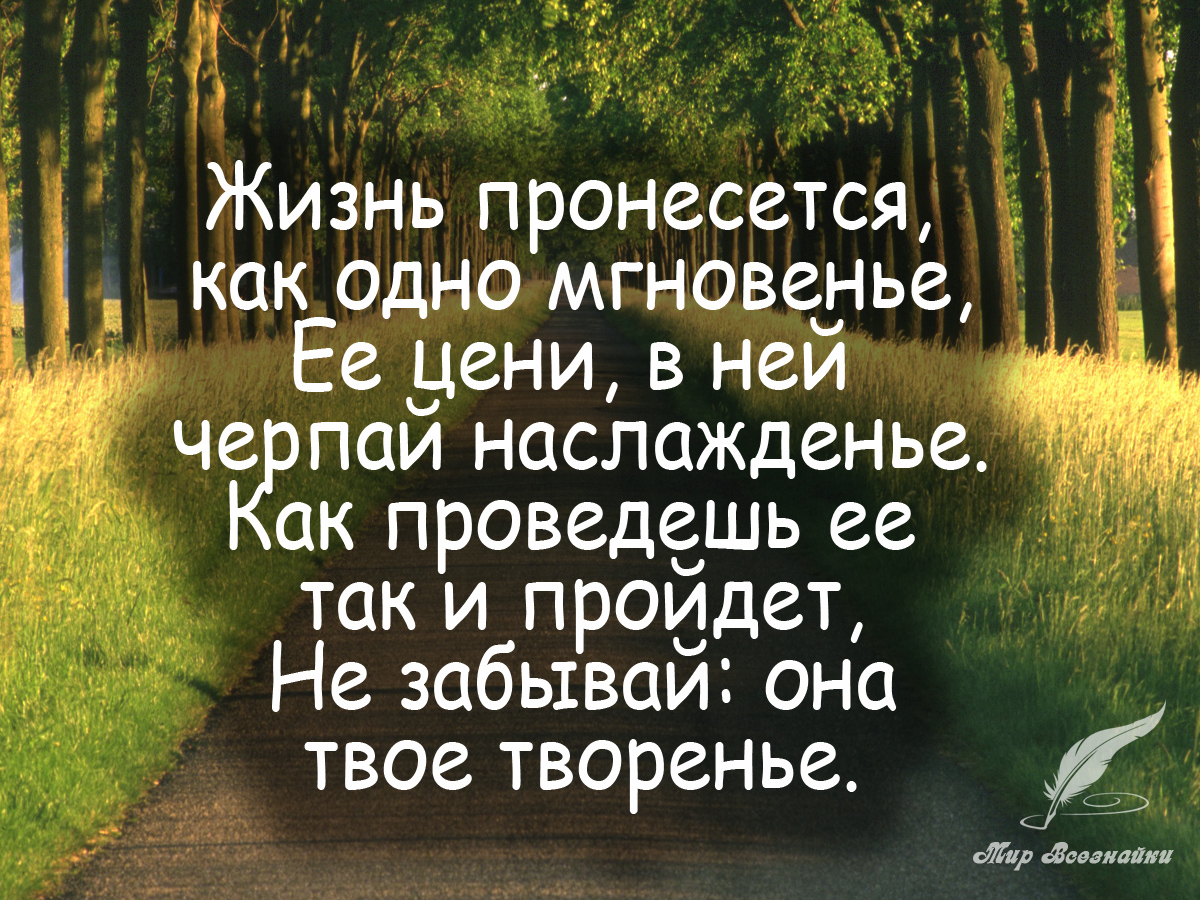 Открытки мудрые мысли о жизни, любимка